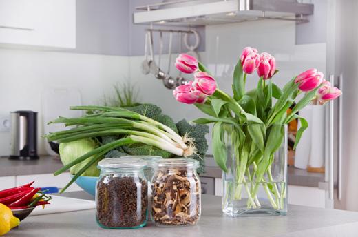 Cattivi odori in casa le fonti e i rimedi scala - Cattivi odori in casa ...